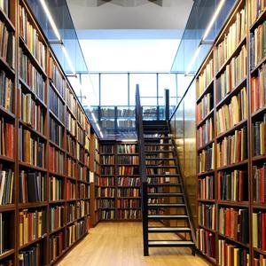 Библиотеки Амзы